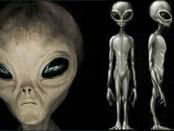 Как выглядят пришельцы - анализ рассказов очевидцев