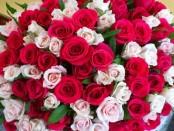 Цветы в Харькове - адресная доставка и покупка в режиме онлайн
