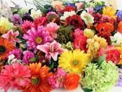 Искусственные цветы оптом в Украине - где купить и как применять