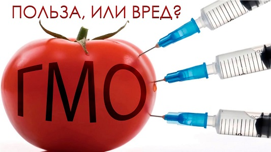 Исследование ученых подтверждает, ДНК человека поглощает ГМО