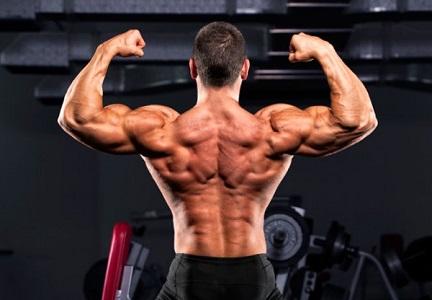 Особенности бодибилдинга - как нарастить мышечную массу