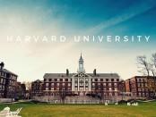 Чему учат в Гарварде в первую очередь. В Сеть просочились 15 главных установок
