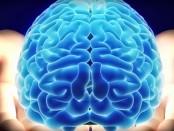 Узнай как быстро работает твой мозг с помощью пятиминутного теста