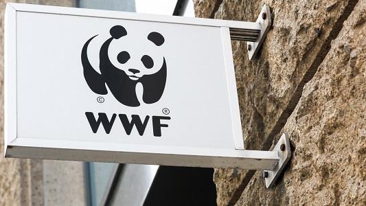 WWF – как идет построения земного рая для «золотого миллиона»