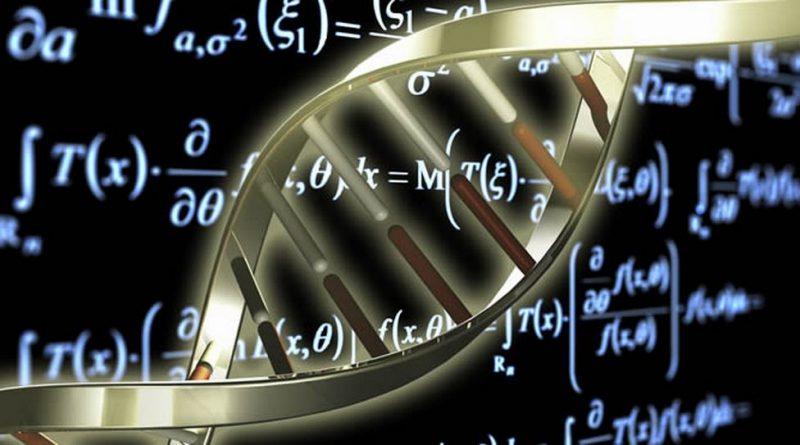 Головоломка по биологии и математике для гениев